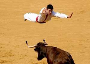 Flying bull fighter.