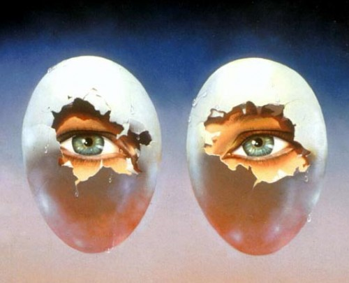 The eggs have eyes