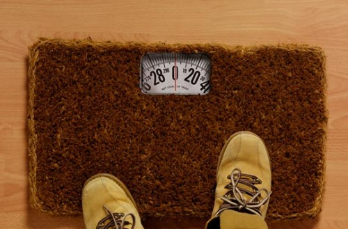 Scale in a door mat - this will keep them out
