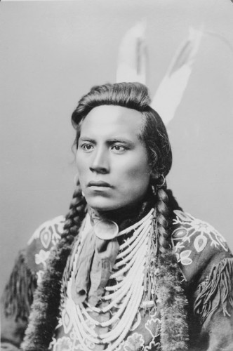 Curly - Crow - 1910