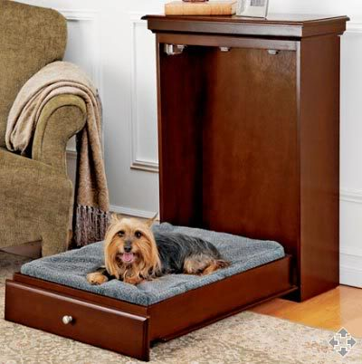 Murphy bed for Fido
