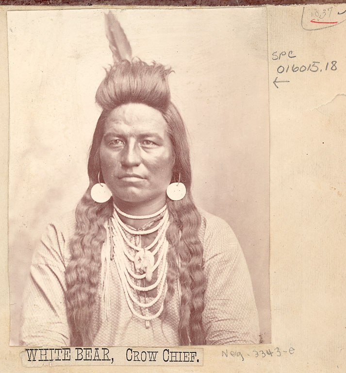White Bear - Crow - no date