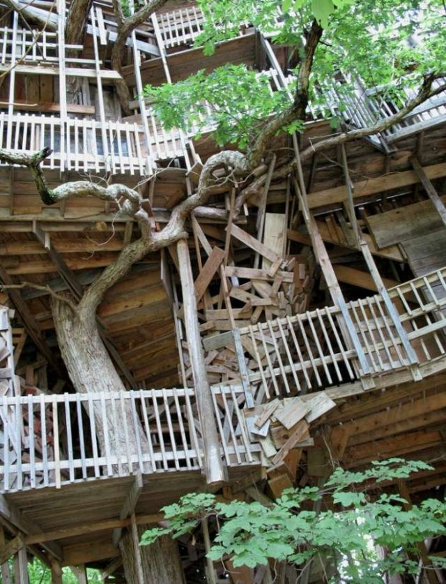 Amazing tree house - The Minister's Tree House in Crossville, Tennessee