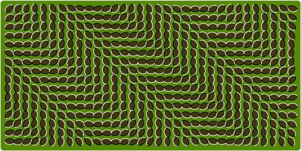 Illusory motion illusion