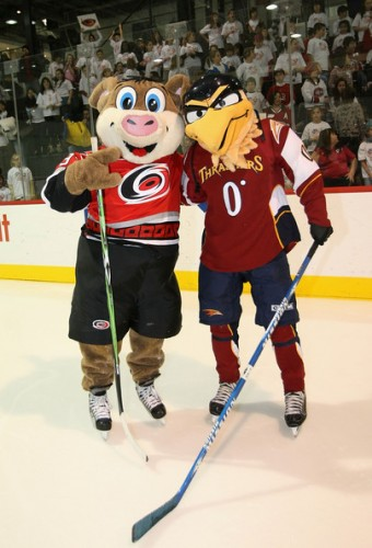 NHL Mascots - hockey