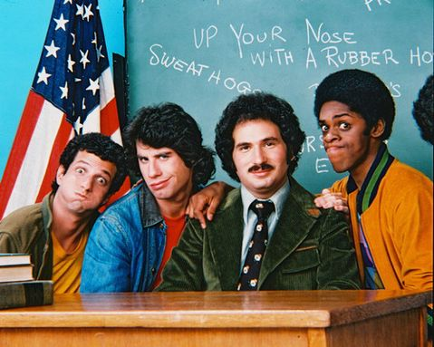Mr Kotter moustache