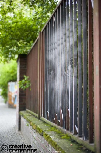 Urban street art - Art on the fence