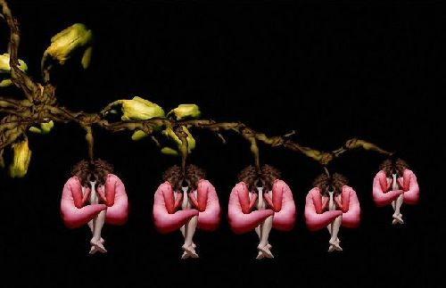 Human Flowers - Amazing Photo Art