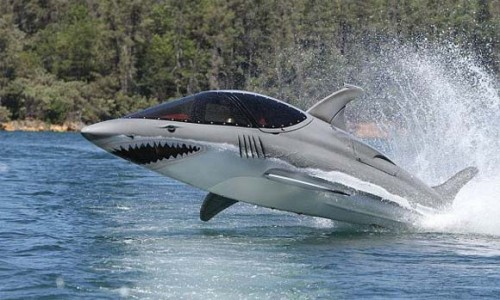 shark speed boat