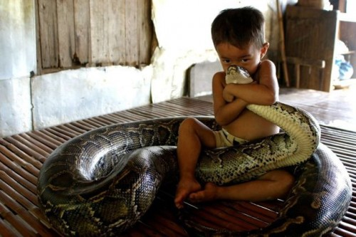 a boy and his pet snake