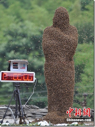 The Bee Suit - Latest Fashion In Hunan