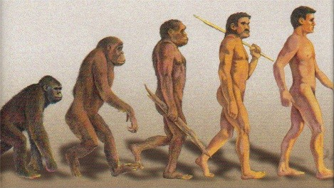 Darwinism and the Origins of the Species