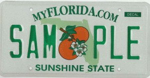 License_Plate_Sample