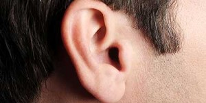 List of Useless Body Parts - exterior ear muscles