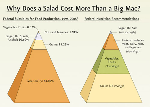 Why vegetables are more expensive than meat in the USA
