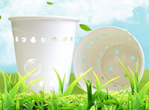 Paper-Cups Biodegradable made from corn