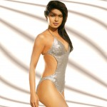 list of top ten sexiest bollywood babes - Priyanka Chopra