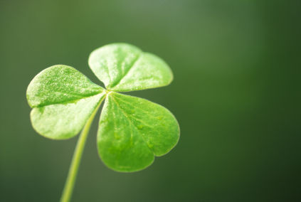 top ten list Irish legends - shamrock